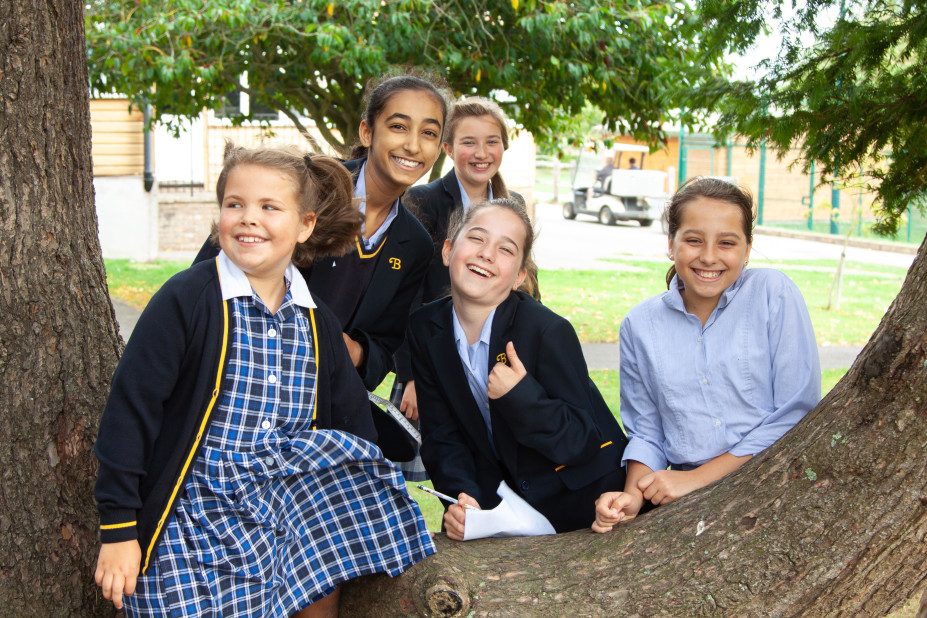 Exploring the nature of Burgess Hill Girls